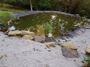 Permaculture étang